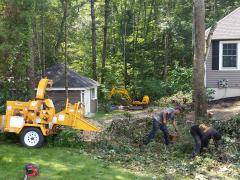 Pelham, NH Tree & Brush Removal